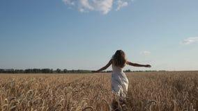 Женщина в белом платье бежать через пшеничное поле акции видеоматериалы