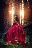 Женщина в длинном красном платье самостоятельно в лесе фантастичном и myst Стоковые Изображения