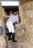 Женщина в конюшне заполняя сеть сена с питанием для ее лошади Стоковое Изображение