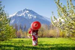 Женщина в костюме Японии на вишневом цвете Стоковые Фото