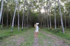 Женщина в лесе использует стекла виртуальной реальности VR стоковое изображение rf