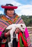 Женщина в национальной одежде держа меньшего ламы в Sacsayhuaman стоковые изображения rf