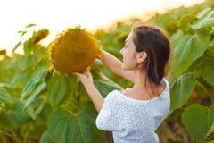 Женщина в поле солнцецвета Стоковые Фотографии RF