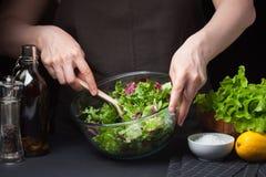 Женщина в процессе делать vegetable салат еда здоровая диетпитание принципиальной схемы Здоровый образ жизни Кашевар дома Стоковые Фото