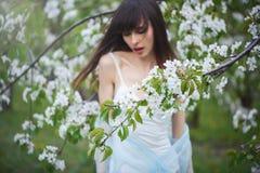 Женщина в саде вишни Стоковое фото RF