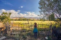 Женщина в шляпе на поле на заходе солнца Стоковое Фото