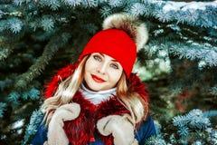 Женщина в mittens в зиме стоковое изображение