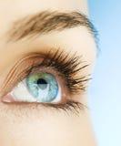 женщина глаза Стоковое фото RF