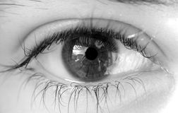 женщина глаза Стоковая Фотография