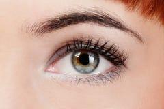 женщина глаза s Стоковые Изображения RF