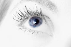 женщина голубого глаза Стоковые Фотографии RF