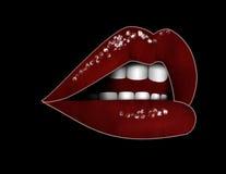 женщина губ Стоковое Изображение RF