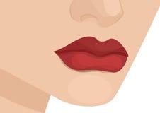 женщина губ s Стоковые Изображения