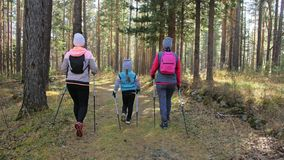 Женщина делает нордический идти в природу Девушки и дети используют trekking ручки и нордические поляков, рюкзаки перемещения сем акции видеоматериалы