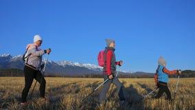 Женщина делает нордический идти в природу на предпосылке гор в поле Девушки и дети используют trekking ручки и нордическое акции видеоматериалы