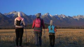 Женщина делает нордический идти в природу на предпосылке гор в поле Девушки и дети используют trekking ручки и нордическое сток-видео