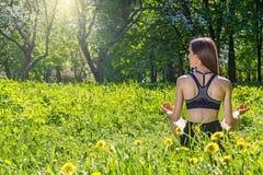 Женщина делая тренировки в парке стоковая фотография