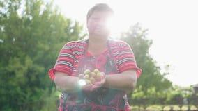 Женщина держащ свежо сжатые огурцы Концепция натуральных продуктов, здорового питания и сбора акции видеоматериалы