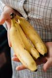 Женщина держа 3 зрелых банана в оружиях Стоковые Изображения