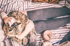 Женщина держит кота стоковое изображение