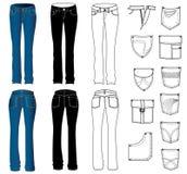 женщина джинсыов иллюстрация штока