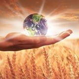 Женщина держа глобус земли Стоковые Изображения RF