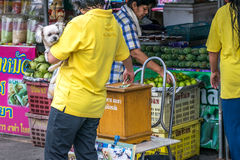 Женщина держа ее собаку даря для того чтобы помочь бездомным собакам стоковое фото