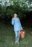Женщина держа корзину полный яблок Стоковое Изображение RF