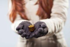 Женщина держа крошечный подарок в ее руках Стоковые Изображения