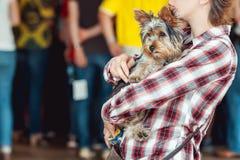 Женщина держа милого щенка Стоковые Фотографии RF