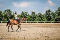 Женщина ехать лошадь в внешней конноспортивной арене Стоковые Фотографии RF