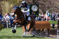 Женщина ехать лошадь в гонке по пересеченной местностей Стоковые Изображения RF