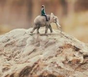 Женщина ехать слон Стоковые Изображения