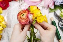 Женщина делая букет из персидских цветков лютика Стоковые Фото