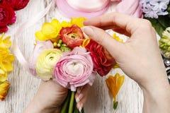 Женщина делая букет из персидских цветков лютика Стоковые Фотографии RF