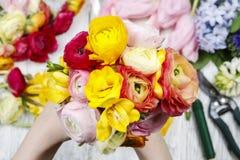 Женщина делая букет из персидских цветков лютика Стоковое Фото