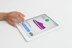 Женщина делая покупки интернета на планшете Стоковое Изображение RF