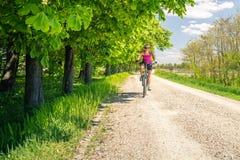 Женщина задействуя горный велосипед в парке города, летнем дне Стоковые Изображения RF