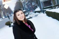 женщина зимы абстрактной иллюстрации стильная Стоковые Изображения RF