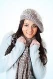 женщина зимы абстрактной иллюстрации стильная Стоковые Изображения