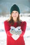 женщина зимы абстрактной иллюстрации стильная Стоковые Фото