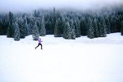 Женщина зимы идущая, jogging воодушевленность и мотивировка стоковые фотографии rf