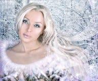 женщина зимы коллажа Стоковое Фото