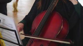 Женщина играя виолончель со смычком виолончели Молодая девушка музыканта играя с violoncello виолончели сток-видео