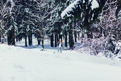 Женщина играя с белой собакой терьера стоковое изображение rf