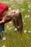 Женщина играя с одуванчиком Стоковая Фотография RF