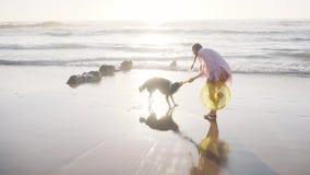 Женщина играя с собакой на пляже видеоматериал