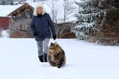 Женщина идет для прогулки с ее норвежским котом леса в зиме Стоковые Изображения