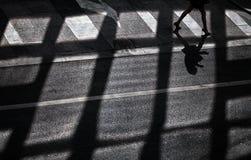 Женщина идя на скрещивание зебры Стоковые Фотографии RF