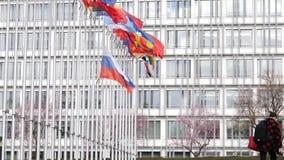 Женщина идя работать на Совете Европы с флагом полу-рангоута летания России акции видеоматериалы